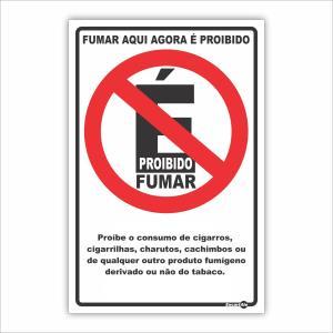 Placa de Sinalização Plástico 20x30cm Proibido Fumar PS600 - Encartale